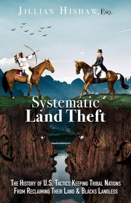 systematic land theft cover